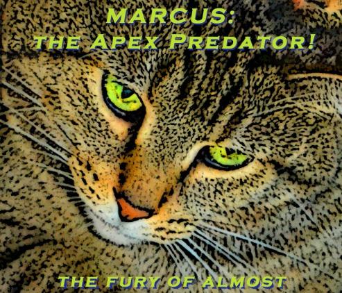 7 17 18 Marcus The Apex Predator