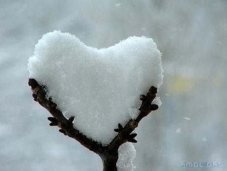 cold-cold-heart-l-r1mysl
